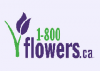 1800flowers.ca